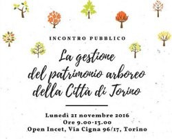 La gestione del patrimonio arboreo della Città di Torino